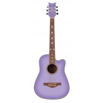 Wildwood Acoustic Guitar (purple daze)